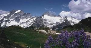 mountain_sceen